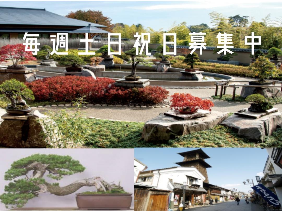 盆栽美術館と川越巡り